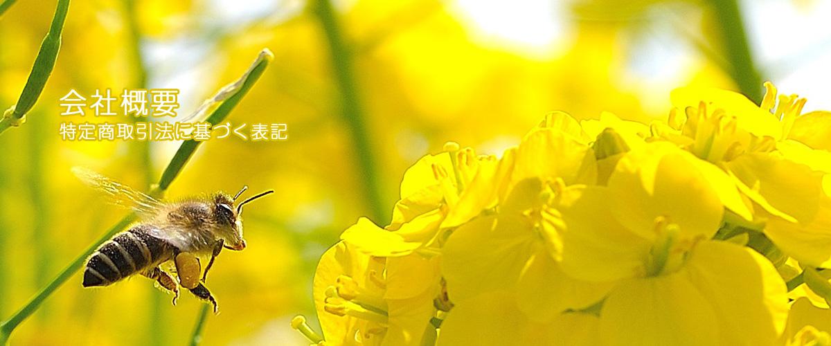 高野養蜂場 会社概要/特定商取引違法に基づく表記
