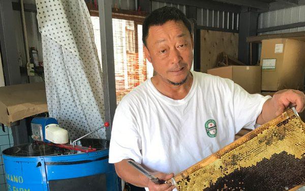 高野養蜂場責任者/高野裕志